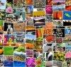 https://www.tp24.it/immagini_articoli/20-10-2020/1603226165-0-creare-un-album-di-foto-online-la-soluzione-per-mettere-su-carta-le-emozioni.jpg
