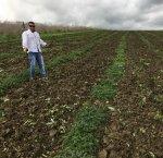 https://www.tp24.it/immagini_articoli/20-11-2018/1542699660-0-agricoltura-sociale-calatafimi-progetto-coltivazione-erbe-aromatiche.jpg