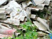 https://www.tp24.it/immagini_articoli/21-01-2012/1379509518-1-castelvetrano-campetti-di-calcio-sopra-i-rifiuti-tossici.jpg