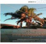 https://www.tp24.it/immagini_articoli/21-02-2019/1550738670-0-villa-contrada-bosco-n183-marsala.jpg