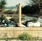 https://www.tp24.it/immagini_articoli/21-02-2019/1550747002-0-marsala-bella-fitusa-risiamo-gelateria-artigel-nuovamente-piena-rifiuti.jpg