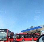 https://www.tp24.it/immagini_articoli/21-02-2019/1550767913-0-trapani-sono-arrivati-sette-autobus-comunali.jpg