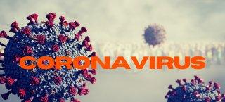 https://www.tp24.it/immagini_articoli/21-10-2020/1603238547-0-coronavirus-62-nuovi-positivi-nel-trapanese-552-totali-il-ministro-speranza-situazione-seria-restate-a-casa.png