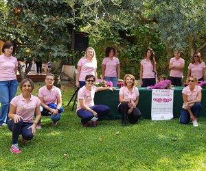 https://www.tp24.it/immagini_articoli/21-10-2020/1603281169-0-a-trapani-il-4-deg-torneo-pink-lady-2020.jpg