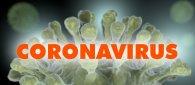 https://www.tp24.it/immagini_articoli/21-10-2021/1634806352-0-covid-italia-i-morti-non-vaccinati-sono-23-volte-di-piu-di-quelli-vaccinati.jpg