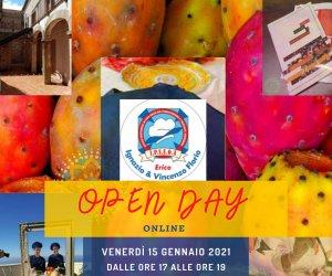 https://www.tp24.it/immagini_articoli/21-12-2020/1608573043-0-open-day-online-all-alberghiero-di-erice.jpg