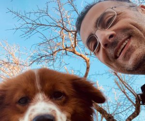 https://www.tp24.it/immagini_articoli/22-02-2021/1613987510-0-cani-amp-congiuntivi-il-doppio-scivolone-social-del-sindaco-di-petrosino.jpg