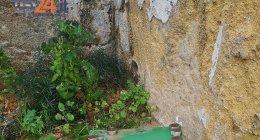 https://www.tp24.it/immagini_articoli/22-03-2019/1553270418-0-marsala-messe-nere-rituali-satanici-sullo-sfondo-dellassassinio-nicoletta.jpg