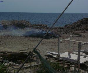 https://www.tp24.it/immagini_articoli/22-05-2017/1495464167-0-marsala-alghe-raccolte-spiaggia-ebruciate.jpg