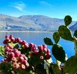 https://www.tp24.it/immagini_articoli/22-05-2018/1526966897-0-sicilia-bando-regione-finanziare-imprese-turistiche-ecco-partecipare.jpg