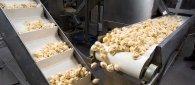https://www.tp24.it/immagini_articoli/22-10-2019/1571780293-0-imprese-alimentari-sicilia-primato-italia-7468-aziende.jpg