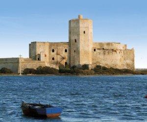 https://www.tp24.it/immagini_articoli/22-11-2018/1542877130-0-trapani-documentario-colombaia-presentato-alluniversita-mediterraneo.jpg
