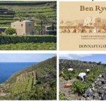 https://www.tp24.it/immagini_articoli/22-11-2018/1542879899-0-2015-donnafugata-mondiale-wine-enthusiast.jpg