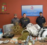 https://www.tp24.it/immagini_articoli/22-12-2017/1513936139-0-droga-arrestato-marsalese-bambina-cane-antidroga-agra-trova-casa.jpg