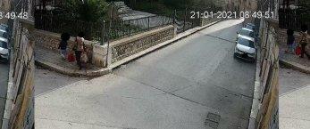 https://www.tp24.it/immagini_articoli/23-01-2021/1611414816-0-marsala-gli-incivili-la-signora-con-la-bambina-nbsp.jpg