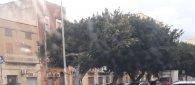https://www.tp24.it/immagini_articoli/23-02-2019/1550941911-0-trapani-scontro-ciclomotore-unauto-conte-agostino-pepoli-ferito.jpg