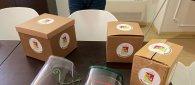 https://www.tp24.it/immagini_articoli/23-11-2020/1606127209-0-meccatronica-sicilia-spariti-40-mln-per-la-riconversione-anti-covid-delle-aziende.jpg
