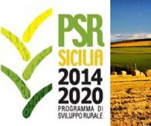 https://www.tp24.it/immagini_articoli/24-04-2017/1493036642-0-psr-sicilia-pronti-i-finanziamenti-alle-attivita-extra-agricole.jpg