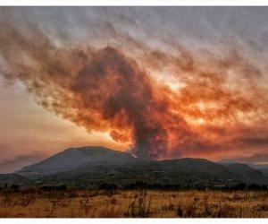 https://www.tp24.it/immagini_articoli/24-07-2017/1500887457-0-ecco-linferno-vito-capo-zingaro-fiamme-mezza-riserva-ridotta-cenere.jpg