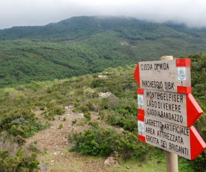 https://www.tp24.it/immagini_articoli/24-09-2019/1569327185-0-cnrs-francia-unipa-parco-pantelleria-insieme-ricerca-sullecologia-globale.jpg