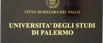 https://www.tp24.it/immagini_articoli/24-09-2020/1600957787-0-a-mazara-apre-due-volte-a-settimana-la-segreteria-remota-dell-universita-di-palermo.jpg