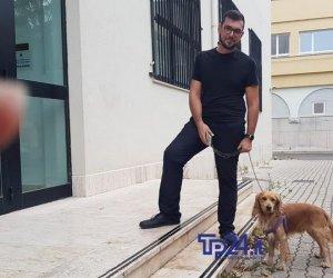 https://www.tp24.it/immagini_articoli/24-10-2019/1571924451-0-cuccioli-abbandonati-trapani-rizzi-scuola.jpg