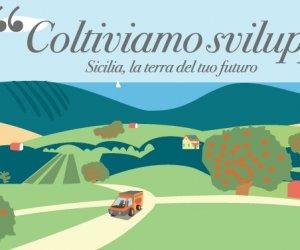https://www.tp24.it/immagini_articoli/25-03-2016/1458893429-0-agricoltura-pronti-i-bandi-del-nuovo-psr-cracolicipromuoviamo-i-prodotti-siciliani.jpg
