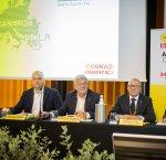 https://www.tp24.it/immagini_articoli/25-06-2018/1529905197-0-conad-conferma-leadership-sicilia-rete-cresce.jpg
