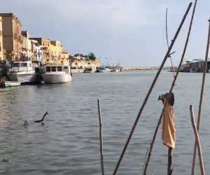 https://www.tp24.it/immagini_articoli/25-06-2019/1561448356-0-fine-fatto-lescavazione-porto-canale-mazara.png