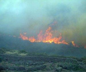 https://www.tp24.it/immagini_articoli/25-07-2016/1469482746-0-incendio-di-pantelleria-indagini-a-tutto-campo-oggi-a-roma-gli-accertamenti-tecnici.jpg