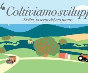 https://www.tp24.it/immagini_articoli/25-11-2015/1448430243-0-agricoltura-approvato-il-psr-sicilia-per-lisola-ci-saranno-22-miliardi-di-euro.jpg