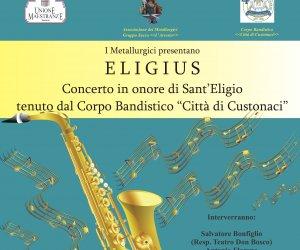https://www.tp24.it/immagini_articoli/25-11-2019/1574699670-0-trapani-venerdi-teatro-bosco-eligius-concerto-dedicato-santeligio.jpg