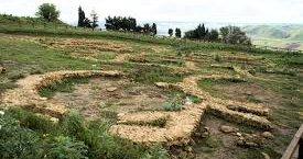 https://www.tp24.it/immagini_articoli/26-06-2019/1561541249-0-salemi-sito-archeologico-mokarta-stato-abbandono.jpg