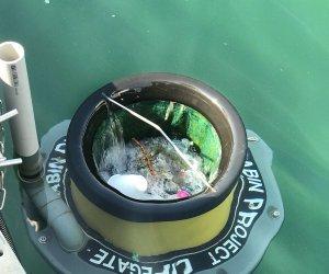 https://www.tp24.it/immagini_articoli/26-07-2021/1627332161-0-un-cestino-mangiarifiuti-nel-mare-di-favignana.jpg