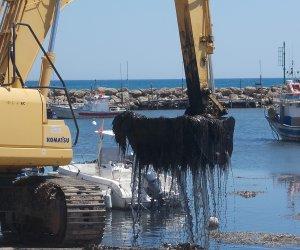 https://www.tp24.it/immagini_articoli/26-09-2016/1474886066-0-le-alghe-di-selinunte-i-tecnici-comunali-sotto-processo-e-la-via-manganelli.jpg