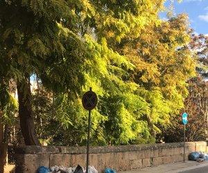 https://www.tp24.it/immagini_articoli/26-10-2020/1603708271-0-marsala-piena-di-rifiuti-un-concorso-di-idee-per-renderla-piu-pulita.jpg