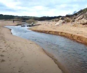 https://www.tp24.it/immagini_articoli/26-10-2020/1603742488-0-quali-oleifici-inquinano-il-mare-di-selinunte.jpg