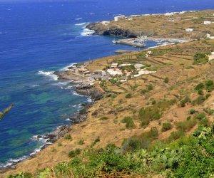 https://www.tp24.it/immagini_articoli/26-11-2019/1574733674-0-pantelleria-concluso-progetto-10000-alberi-dimenticare-lincendio-2016.jpg