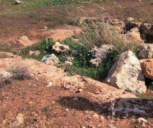 https://www.tp24.it/immagini_articoli/26-11-2020/1606377878-0-archeologia-sicilia-dopo-2500-anni-ancora-visibili-opere-di-ingegneria-militare-a-mazara.jpg