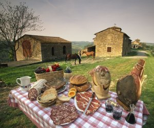 https://www.tp24.it/immagini_articoli/27-02-2020/1582792805-0-coronavirus-mila-aziende-agroalimentari-siciliane-rischio-paralisi.jpg
