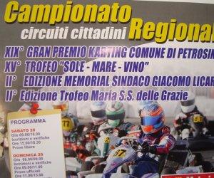 https://www.tp24.it/immagini_articoli/27-06-2014/1403898038-0-a-petrosino-la-xix-edizione-del-gran-premio-di-karting.jpg