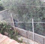 https://www.tp24.it/immagini_articoli/27-06-2018/1530076994-0-marsala-guerra-vicini-dammusello-scrive-ancora-ferro-replica-culicchia.jpg