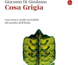 https://www.tp24.it/immagini_articoli/27-09-2012/1379509131-1-esce-oggi-cosa-grigia-il-racconto-della-nuova-mafia-allassalto-ditalia.jpg