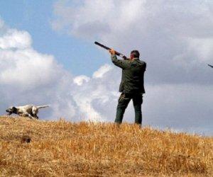 https://www.tp24.it/immagini_articoli/27-09-2019/1569567531-0-emergenza-bracconaggio-trapani-sospendete-caccia-tutta-provincia.jpg