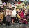 https://www.tp24.it/immagini_articoli/28-01-2019/1548664528-0-genocidio-solo-sterminio-massa.jpg