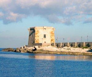 https://www.tp24.it/immagini_articoli/28-01-2020/1580224027-0-trapani-proposta-busto-ricordare-sebastiano-tusa-torre-ligny.jpg