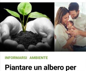 https://www.tp24.it/immagini_articoli/28-02-2021/1614538261-0-marsala-non-applica-la-legge-un-albero-per-ogni-bambino-nato.jpg