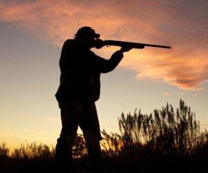 https://www.tp24.it/immagini_articoli/28-09-2019/1569655225-0-bracconaggio-federcaccia-trapani-strumentale-chiedere-sospensione-caccia.jpg