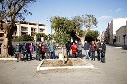 https://www.tp24.it/immagini_articoli/28-12-2019/1577528527-0-trapani-piantata-eritrina-viale-duca-daosta-donata-donna-trapanese.jpg