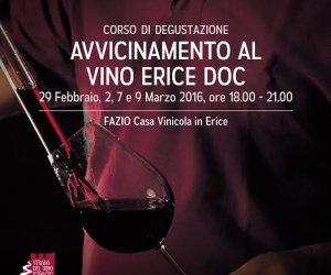 https://www.tp24.it/immagini_articoli/29-02-2016/1456761115-0-ad-erice-il-corso-avvicinamento-al-vino-erice-doc.jpg